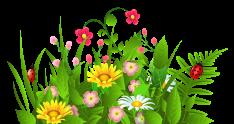 Flowers-clip-art-free-clipart-images-clipartwiz-2