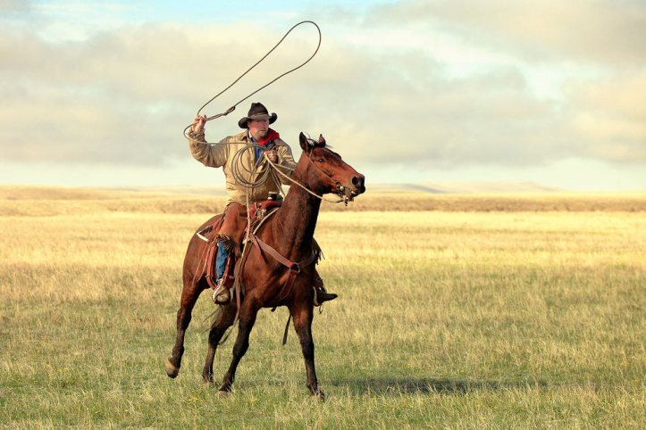 Image result for picture of cowboys